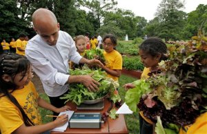 Assistant Koss helps children weigh their harvest of lettuce.