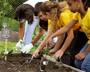 Michelle Obama plants alongside fifth graders in White House garden.